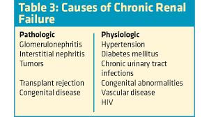 cytotec drug