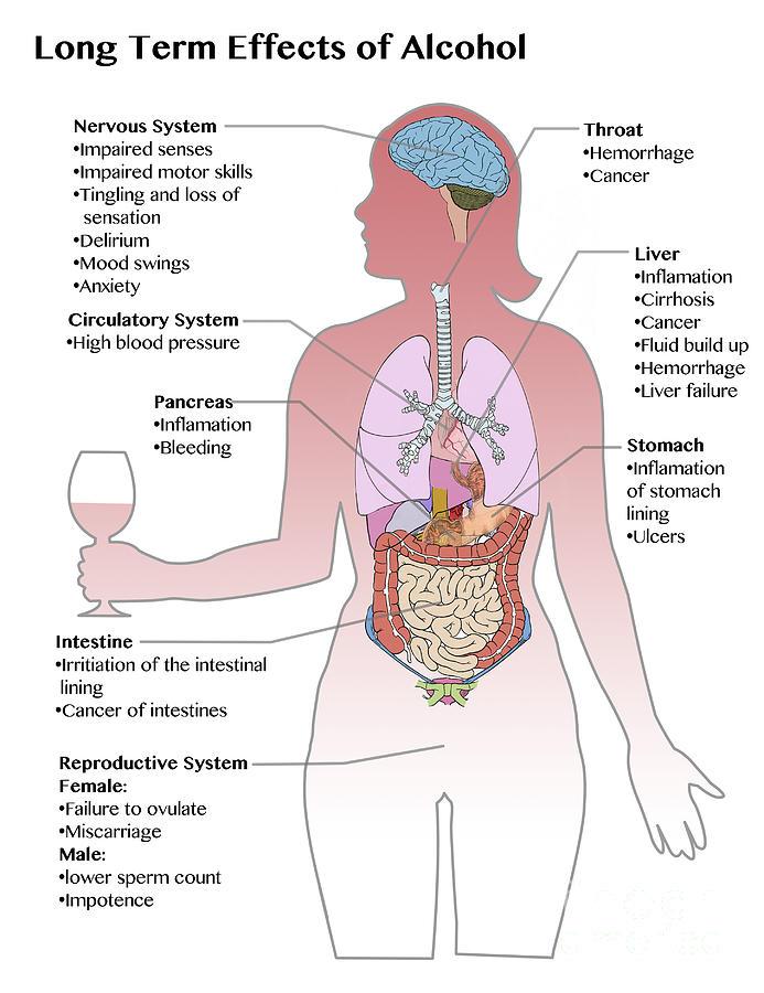 Viagra Effects On Heart