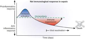 sepsis inflammatory process