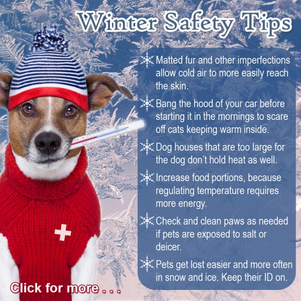 Your Home Heating Safety Tips: Part II Preparing For The Winter (staying Healthy During